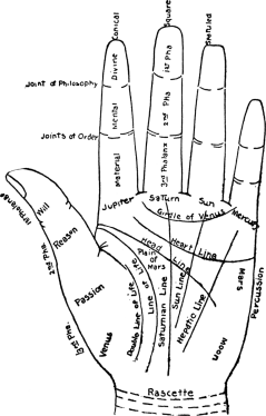 766px-Chart_of_the_Hand