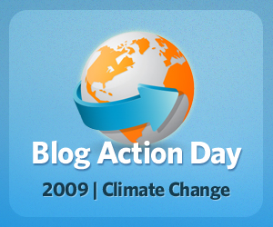 blog-action-day-2009-300x250