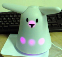 small-rabbit.jpg