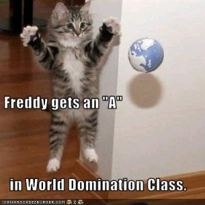 funny-pictures-cat-has-world-domination-class-300x300