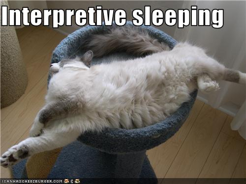 funny-pictures-cat-sleeps-strangely