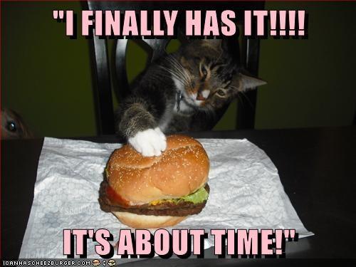 can-has-cheezeburger.jpeg