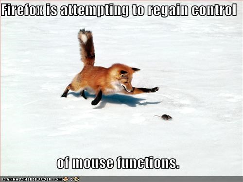 funny-pictures-firefox-mouse-functions