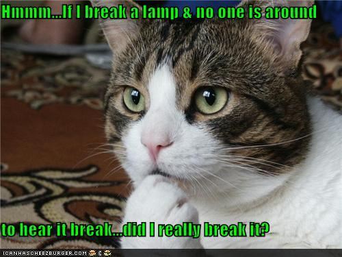 funny-pictures-hmmm-if-i-break-a-lamp-no-one-is-around-to-hear-it-break-did-i-really-break-it