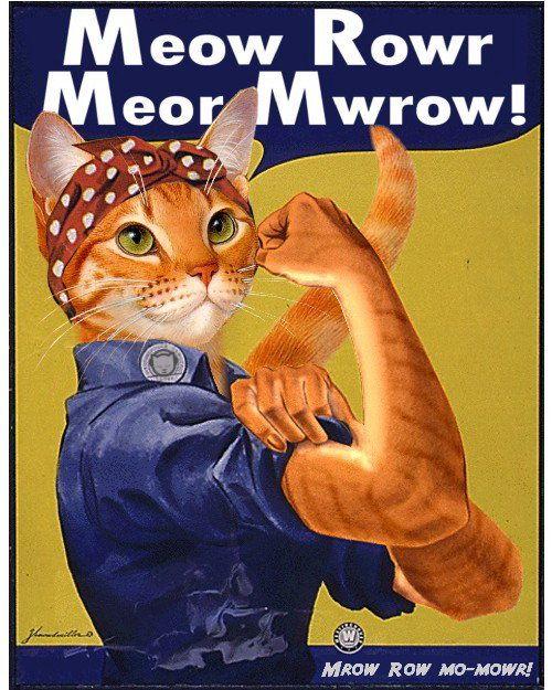 meowrow-cat