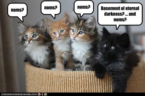 cat-thinks