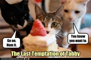 last-tempation-of-tabby-300x199