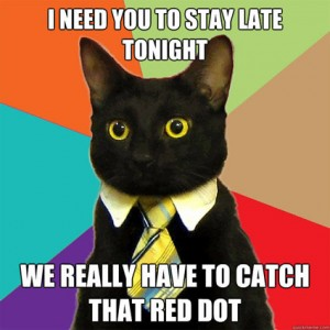 funny-lolcats-business-cats-red-dot-catch-meeting-photo-pic-humor-joke-meme-300x3001